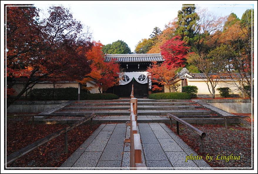 京都光明寺(1).JPG