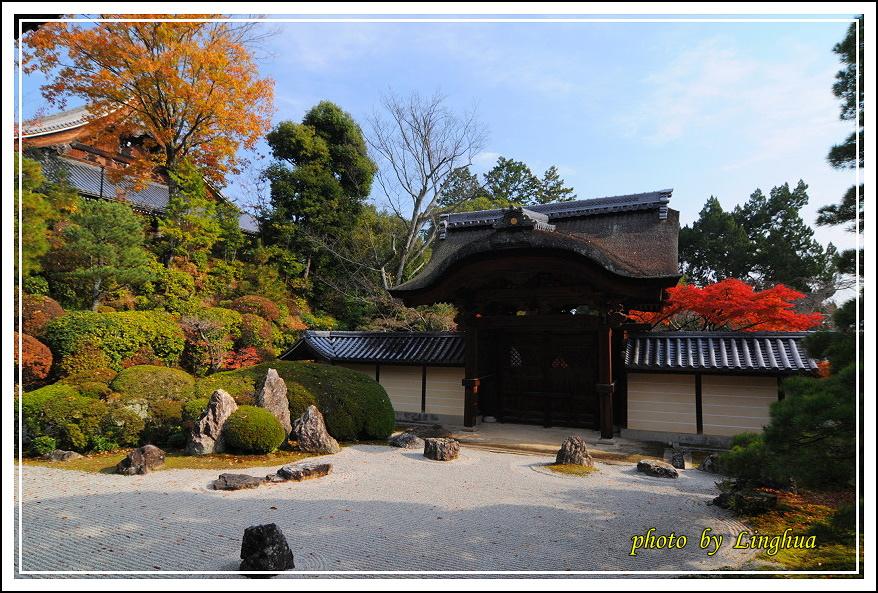 京都光明寺(25).JPG