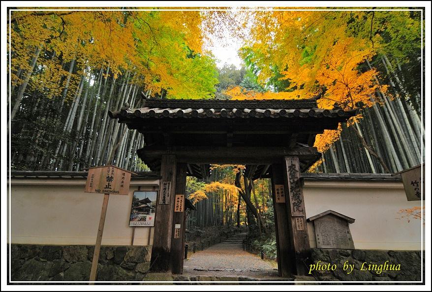 京都~衣笠山地藏院(2).JPG