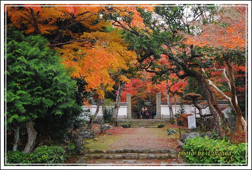 京都~衣笠山地藏院(3).JPG
