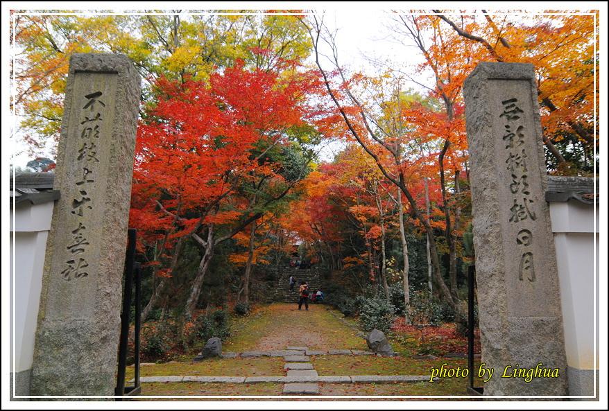 京都~衣笠山地藏院(4).JPG