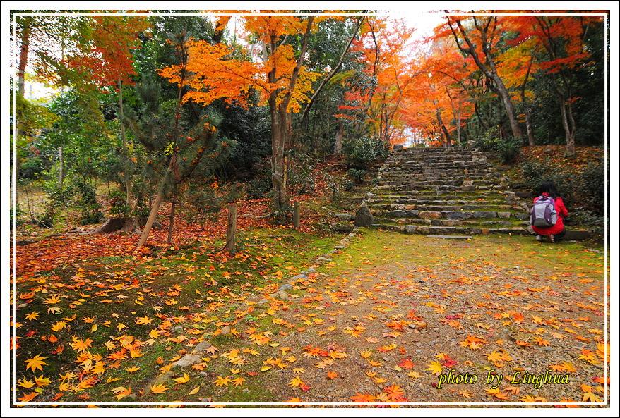 京都~衣笠山地藏院(6).JPG
