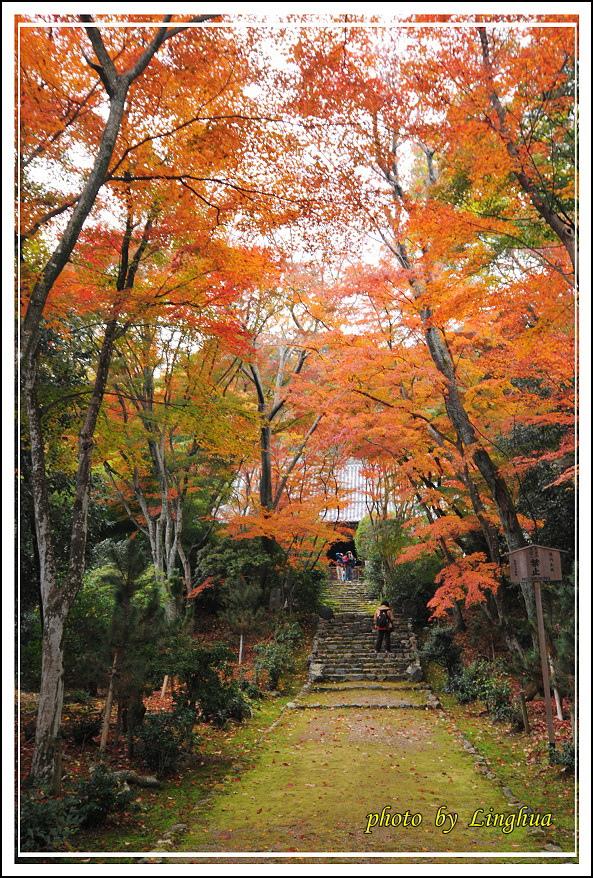 京都~衣笠山地藏院(8).jpg