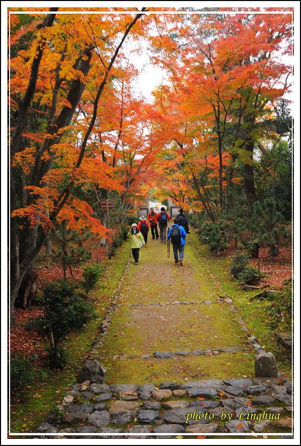 京都~衣笠山地藏院(9).jpg