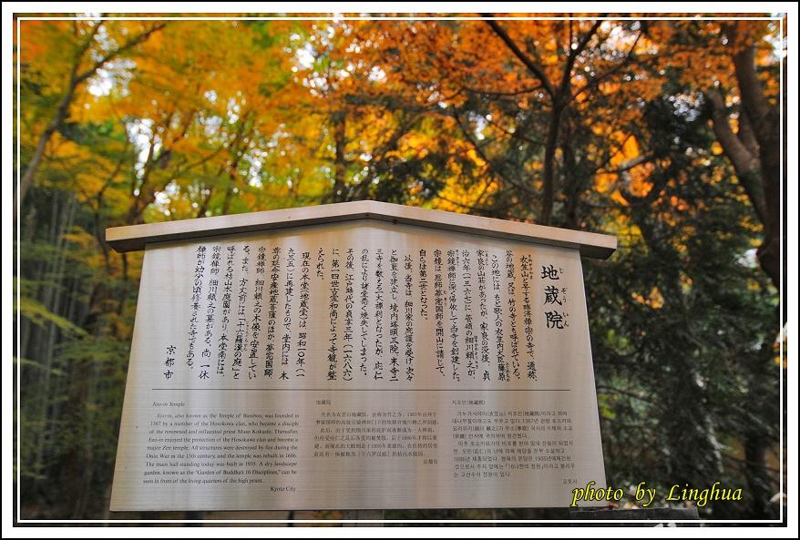 京都~衣笠山地藏院(12).JPG