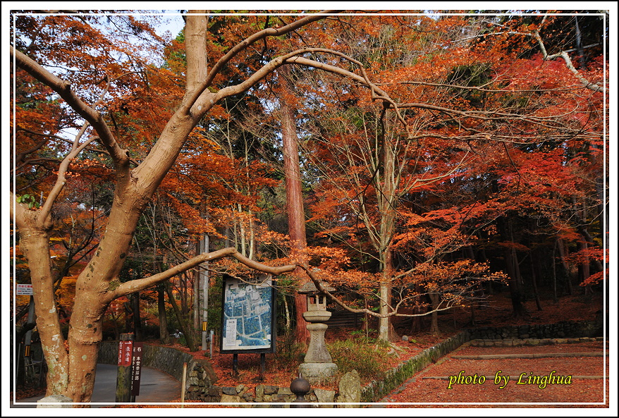 京都~毘沙門堂(2).JPG