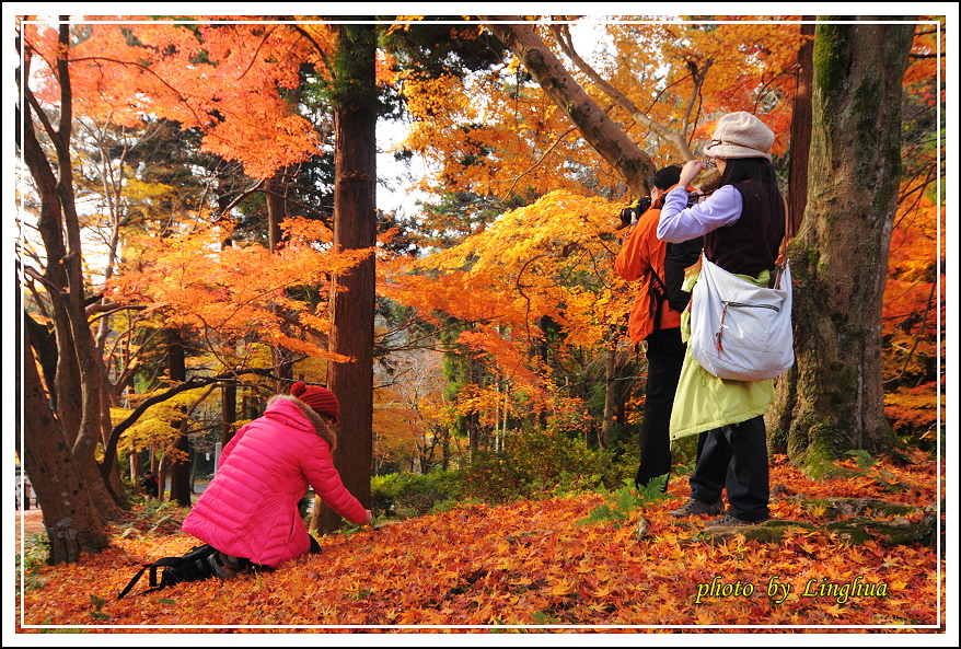 京都~毘沙門堂(9).JPG
