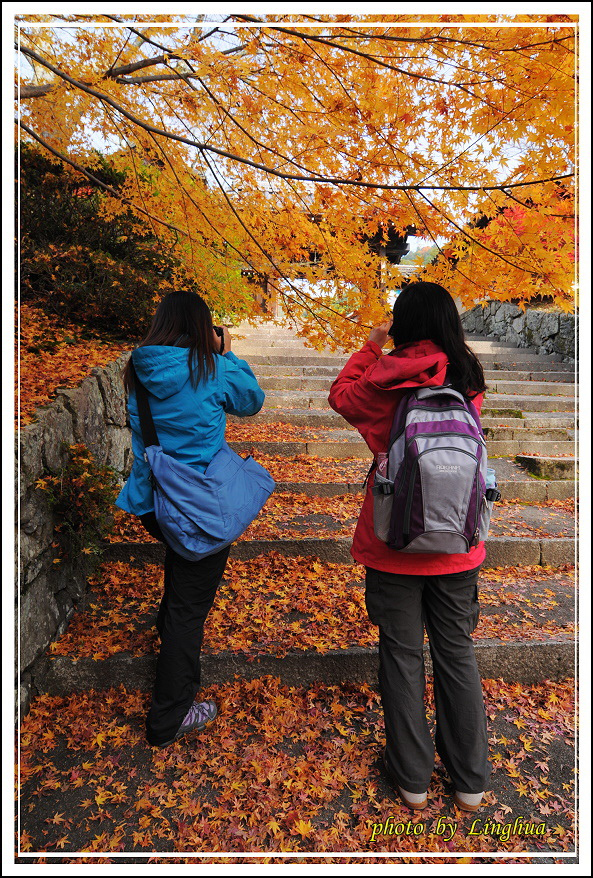 京都~毘沙門堂(10).jpg