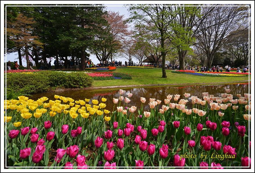日本昭和紀念公園(1).JPG