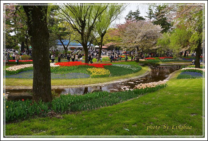 日本昭和紀念公園(15).JPG