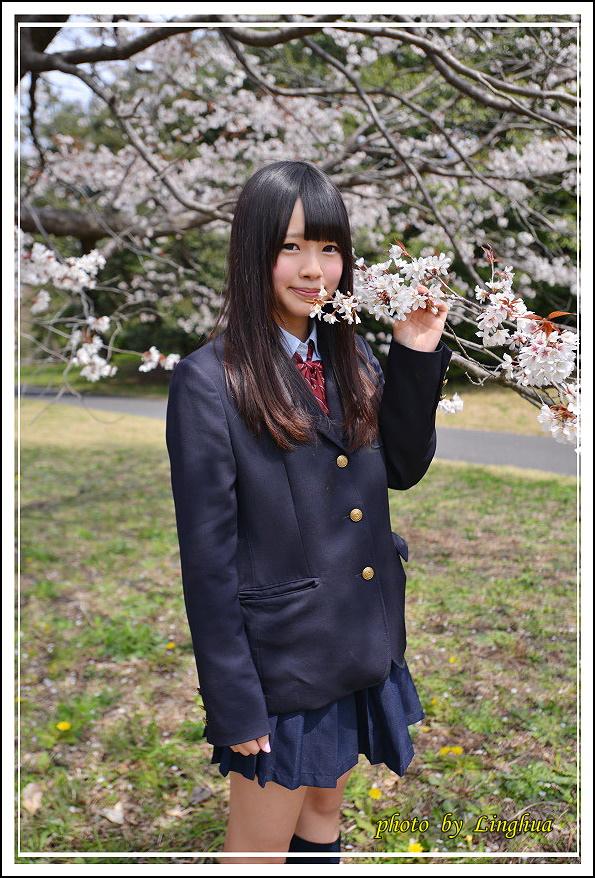 昭和公園2 Sakurahana(17).JPG
