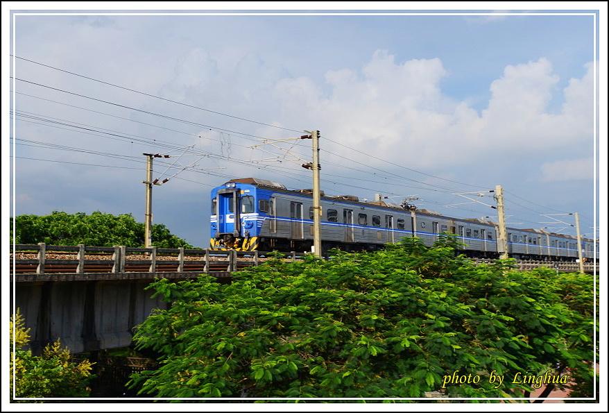 大樹舊鐵橋(18).JPG