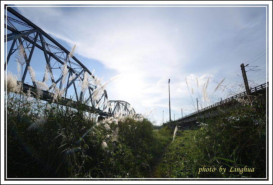 大樹舊鐵橋(27).JPG