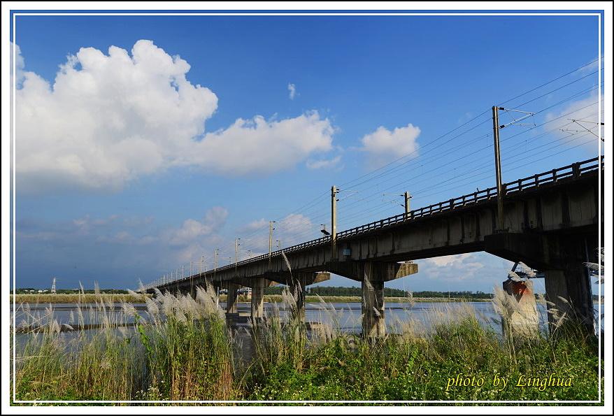 大樹舊鐵橋(29).JPG