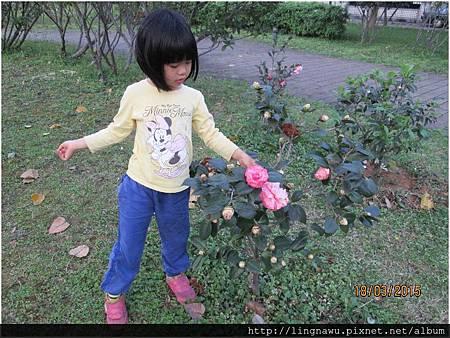 PhotoWindow_20150318232048