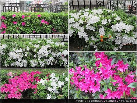 PhotoWindow_20150321162952