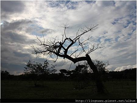 PhotoWindow_20151111180225.jpg