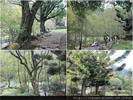 PhotoWindow_20151207155458.jpg