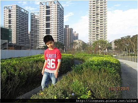 PhotoWindow_20151223114132.jpg