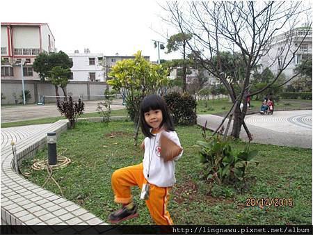 PhotoWindow_20160117113116.jpg