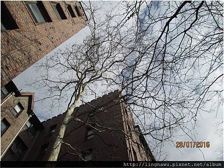 PhotoWindow_20160128225600.jpg