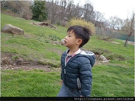 PhotoWindow_20160320102545.jpg