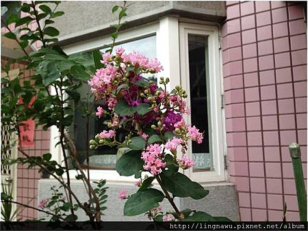 PhotoWindow_20160614095458.jpg