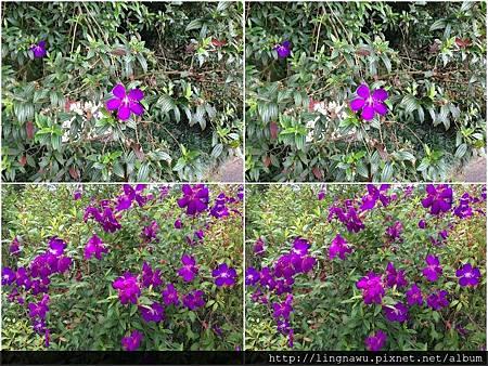 PhotoWindow_20161023213053.jpg