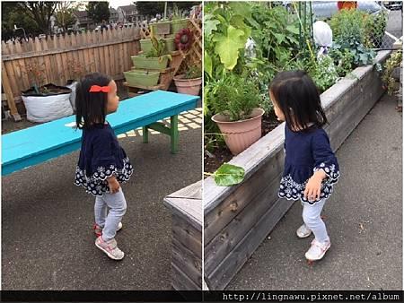 PhotoWindow_20171014094324.jpg