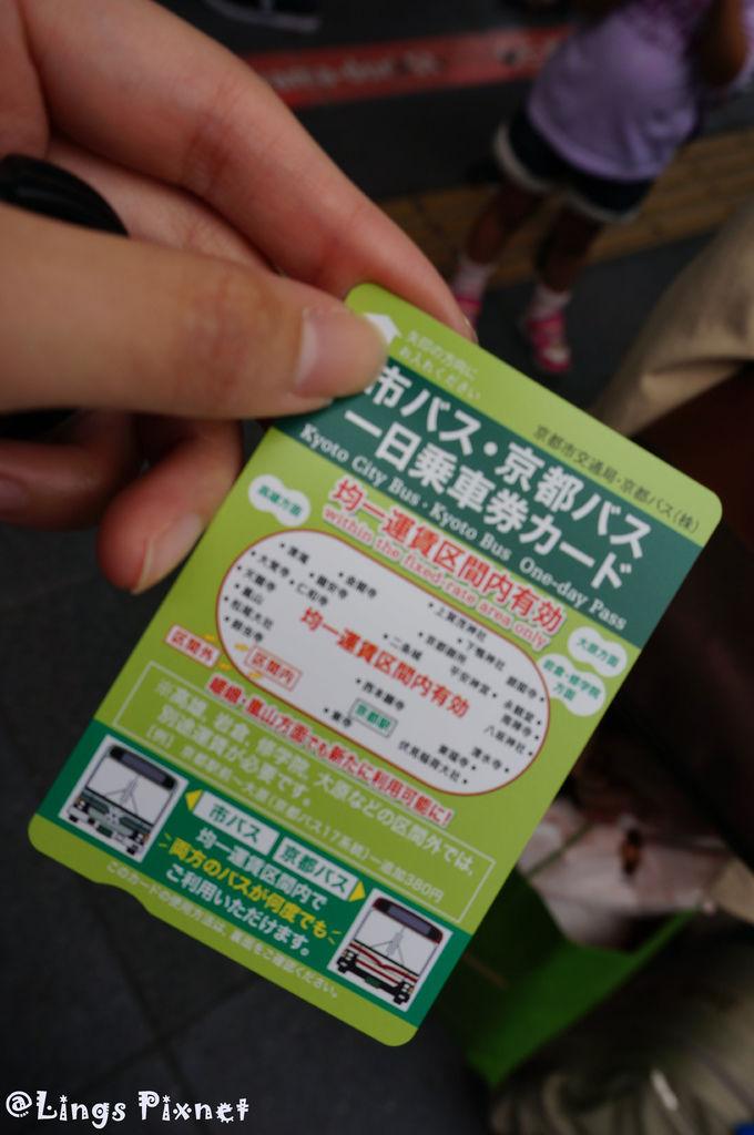 DSC00931.jpg