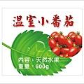 0401-溫室小番茄1.jpg
