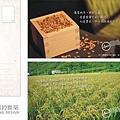 7號儀-南島系列明信片-定.jpg