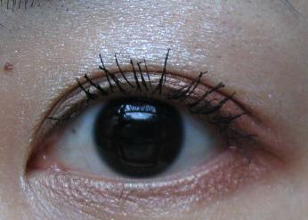 FASIO眼影16.jpg