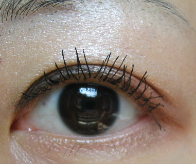 FASIO眼影32.jpg