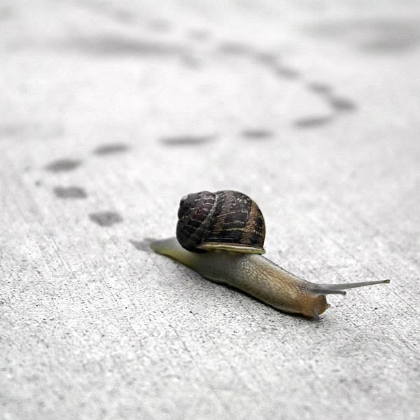 做事動作慢,時間都浪費在