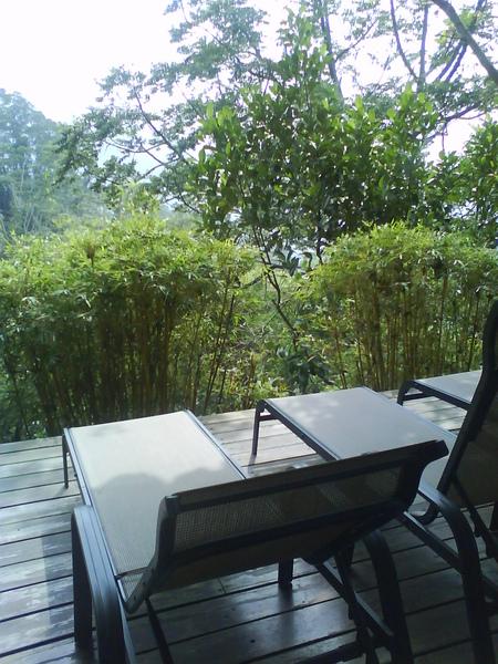面對綠竹林的躺椅