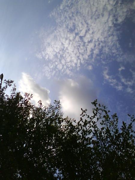 亮藍色的台北天空