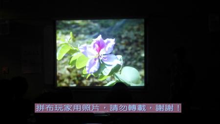 P1250957.jpg