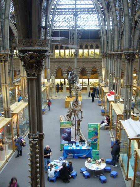 牛津自然史博物館.jpg