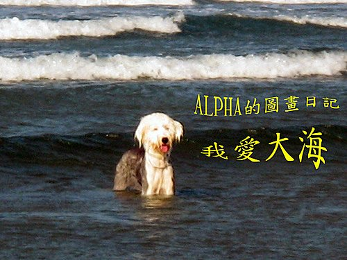 alpha in sea