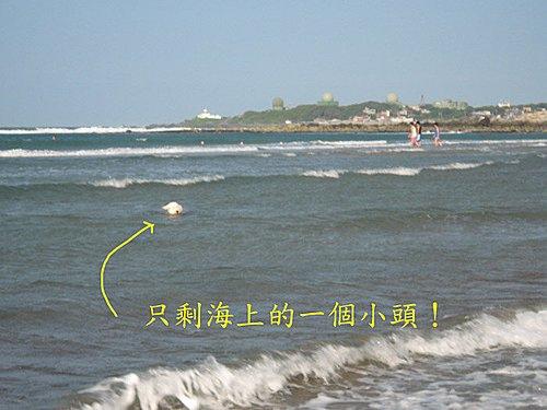 海上的小頭.jpg