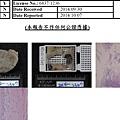 Pathology-2.jpg