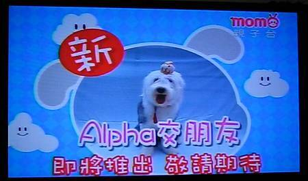 alpha wait -7.jpg