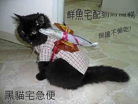 黑貓鮮魚宅配s.jpg