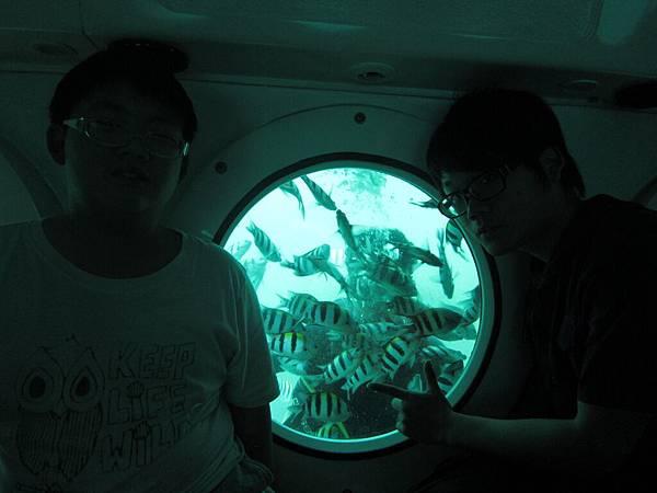 2011.1.29~2.2-峇里島-2-星願灣日遊-2-14(亞特蘭提斯號潛艇~大少爺).JPG