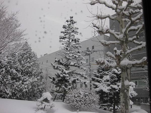 99.2-北海道-雪之都-1.JPG