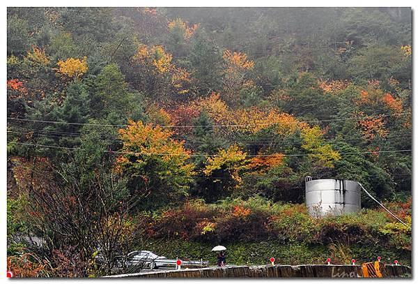 畢祿溪谷-2.jpg