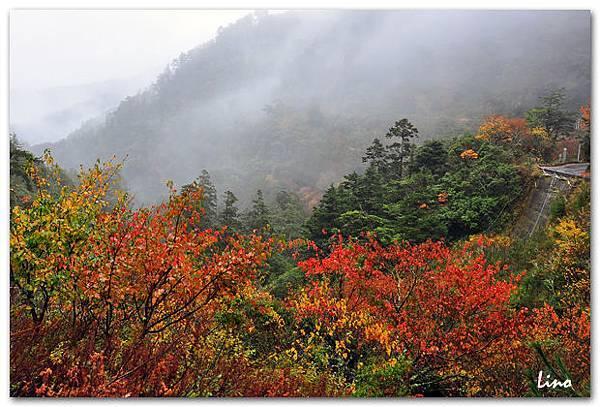 畢祿溪谷-1.jpg