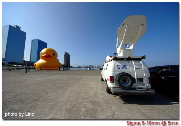 duck-011