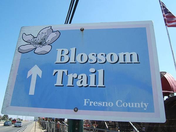 3301Blossom Trail.jpg